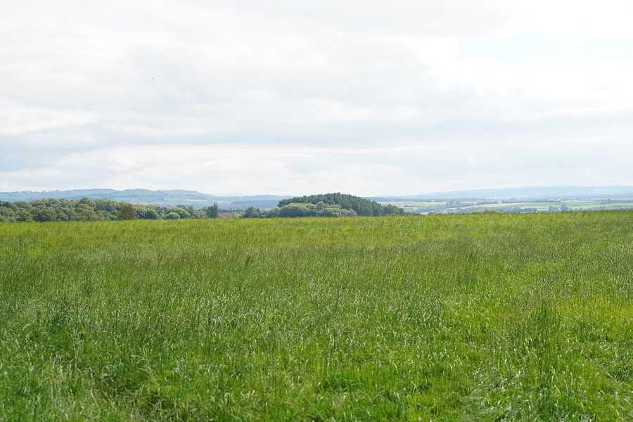 Wishaw, Lanarkshire